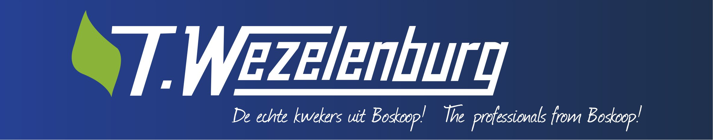 T. Wezelenburg Handelskwekerijen BV: Boomkwekerij Medewerker