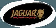 Jaguar the Fresh Company via Beesiks